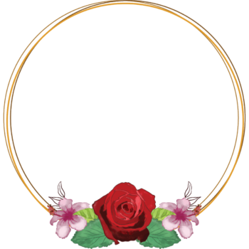 Red Rose Transparent watercolor floral round frame png image