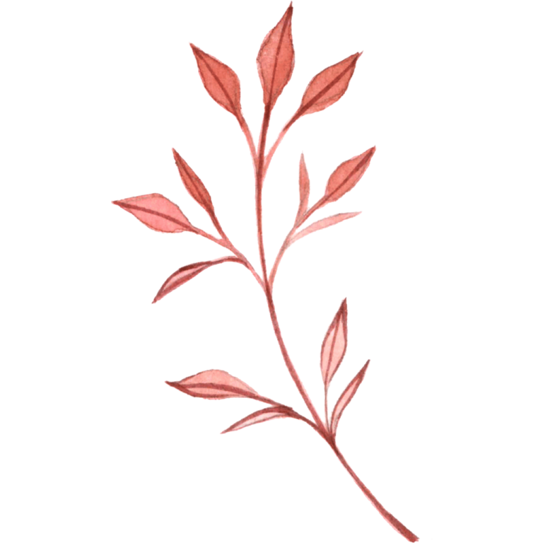 Red watercolor branch png leaf