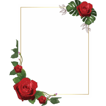 Rose portrait Transparent watercolor floral frame png