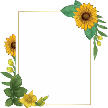 Sunflower portrait Transparent watercolor floral frame png