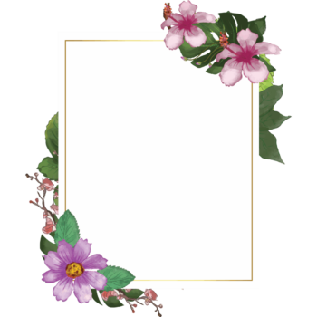 Transparent watercolor floral frame png portrait images