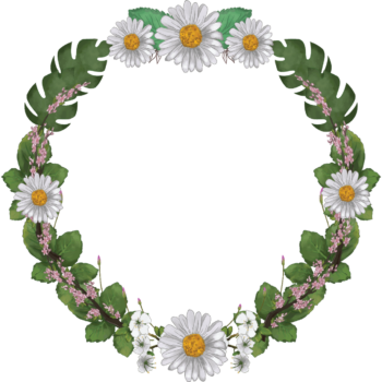 Transparent watercolor floral round frame png image