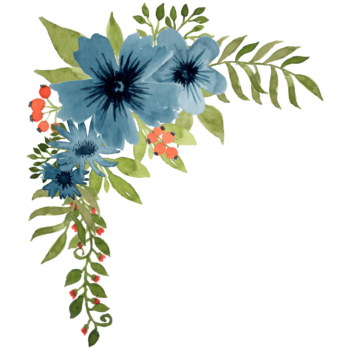 Watercolor blue poppy flower png corner