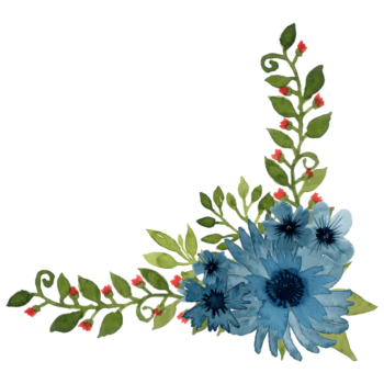 Watercolor blue poppy flower png for corner