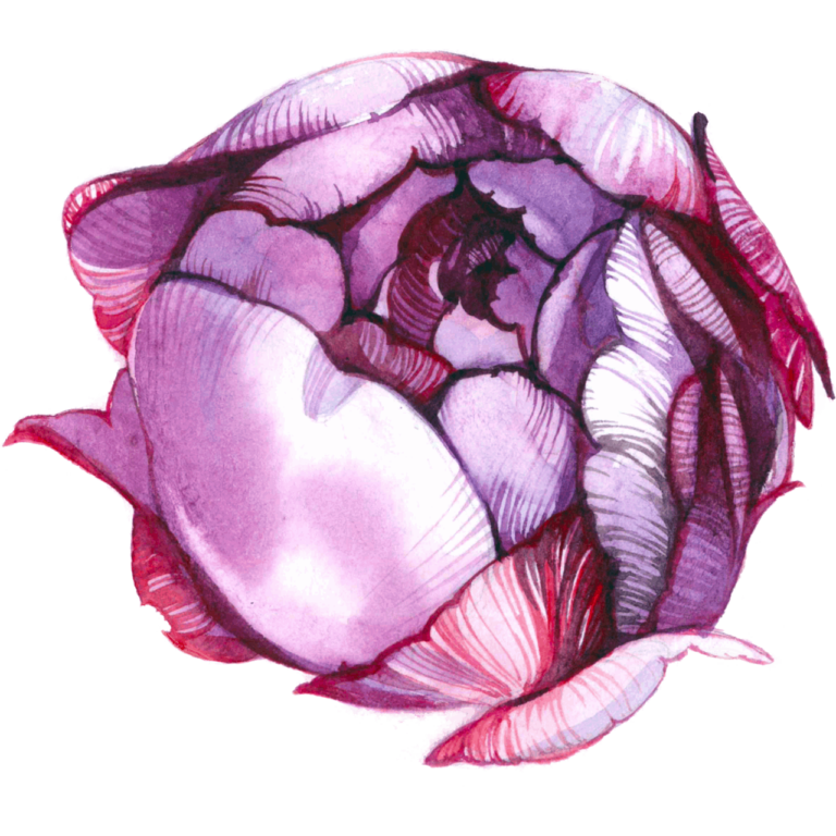 Watercolor flower png images