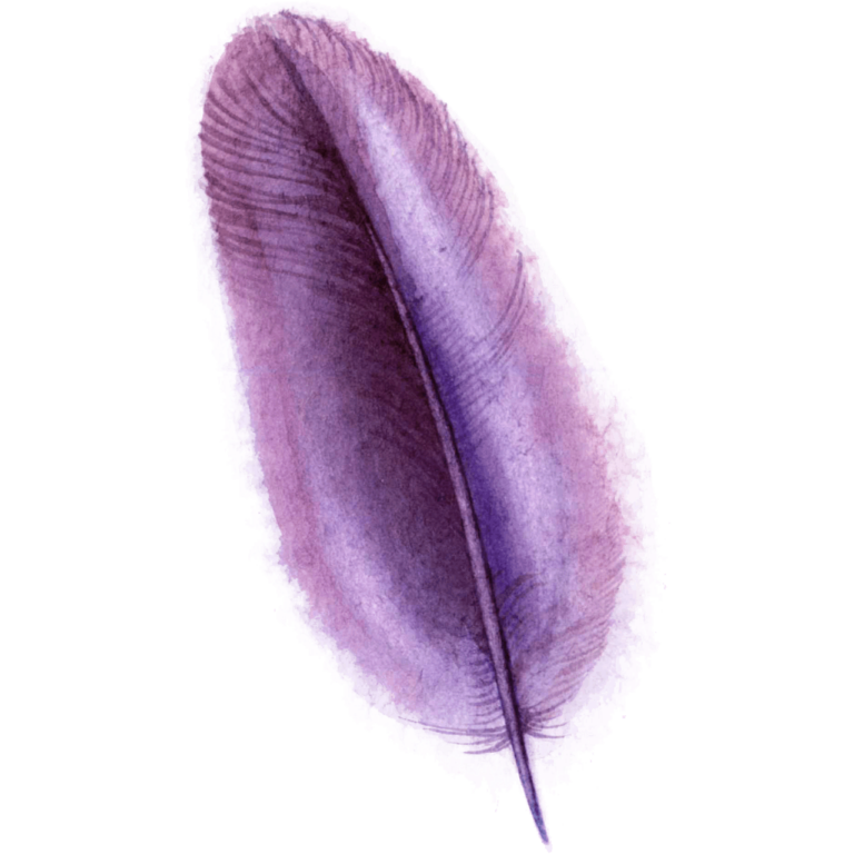 watercolor pink or purple feather