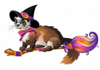 Cute Fluffy Ferret In The Black Witch Hat Flying Vector